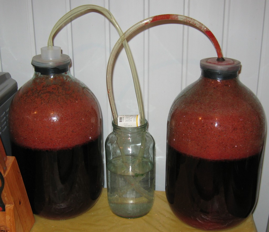 Как сделать вино или брагу