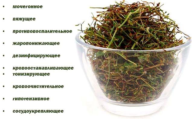Трава Спорыша Инструкция По Применению - фото 6