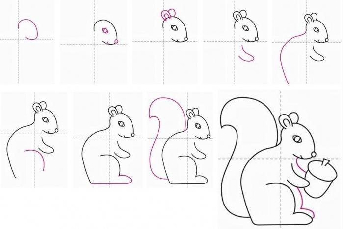 Схема рисования белку