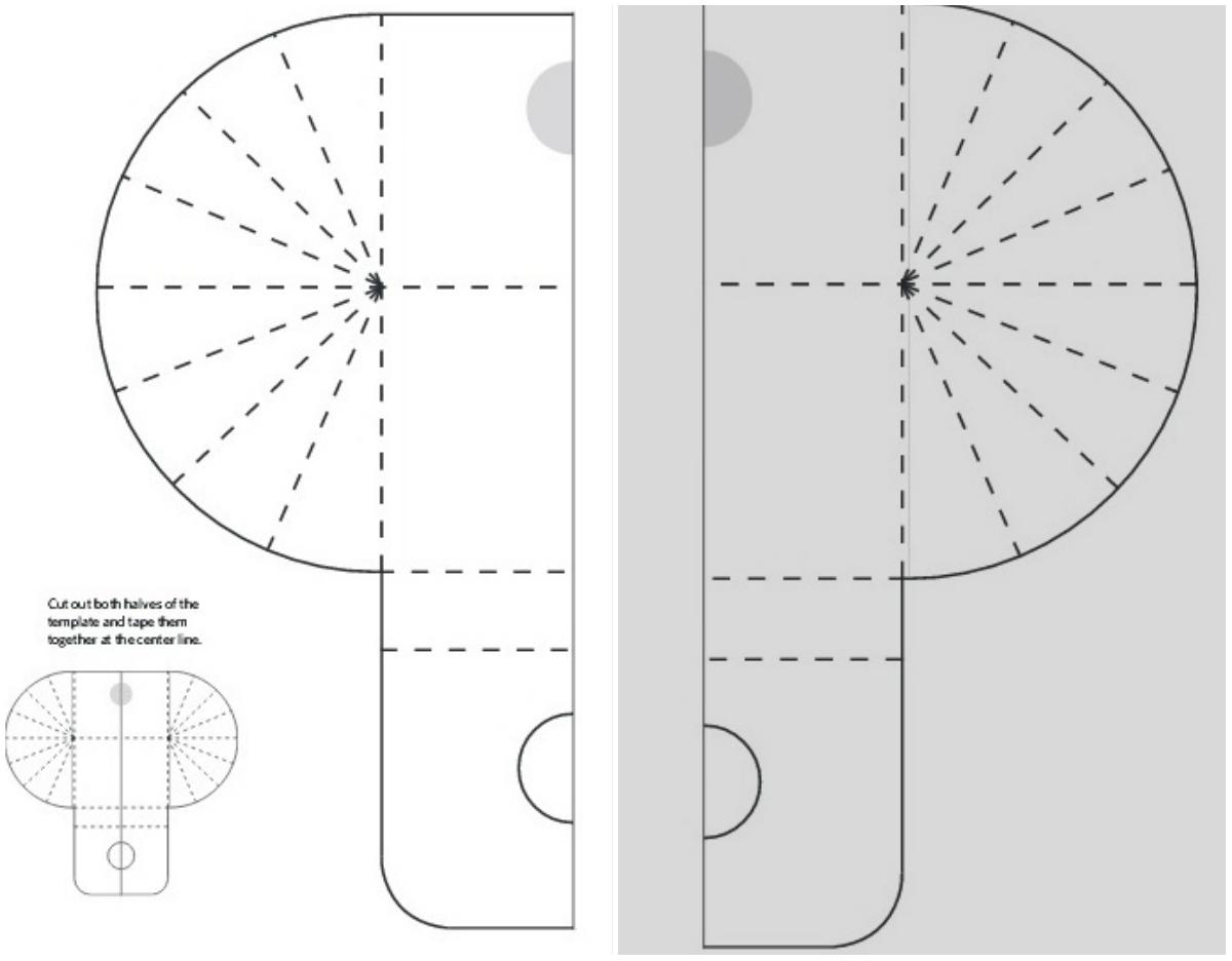 Ахатина, гигантская домашняя улитка ахатина: фото, уход, содержание 17