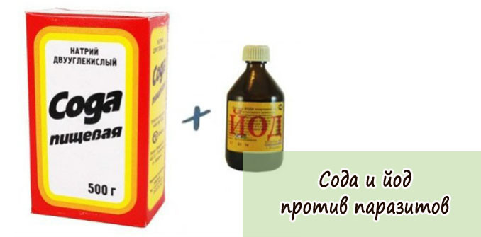 чистка от паразитов содой в домашних условиях