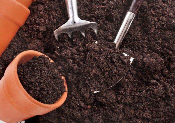 Земля для выращивание 66