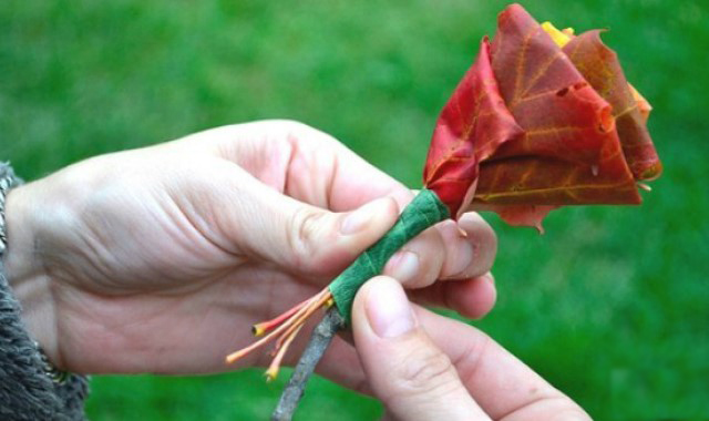 «Осенний» цветок