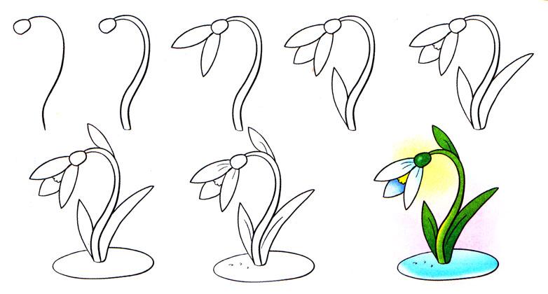 Рисунки цветов подснежников карандашом