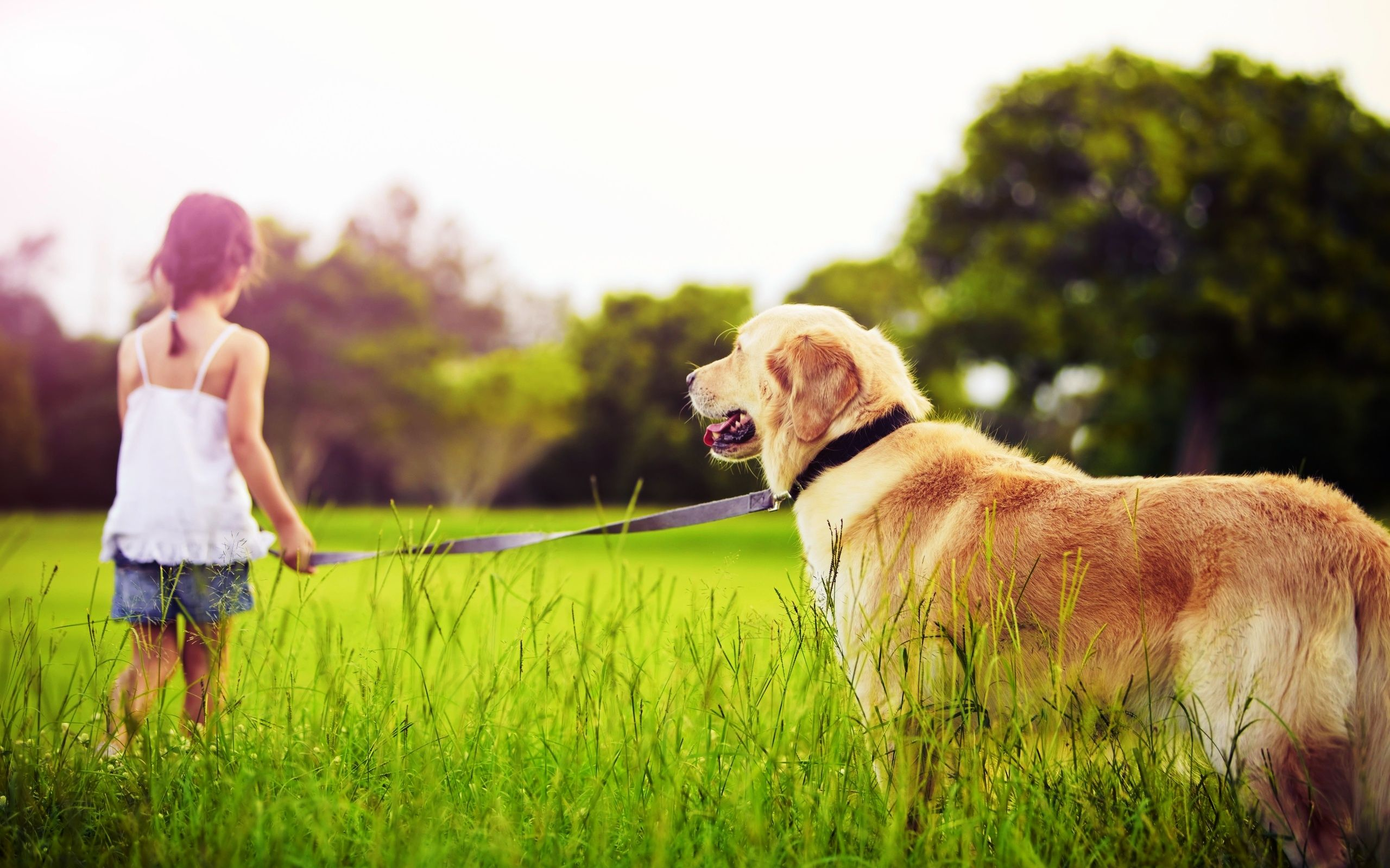 Какую собаку купить ребенку в частном доме: лучшие породы собак для семей с детьми для частного дома