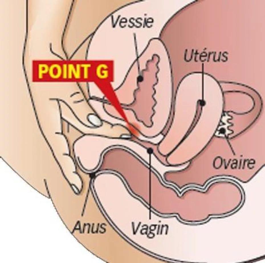 Какая поза в сексе стимулирует у девушки точку g