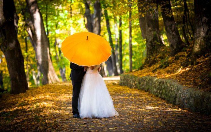 Осень — пора свадеб. и самое лучшее время для начала работы адвент-агенства