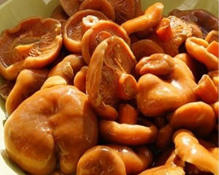 порция соленых рыжиков в тарелке